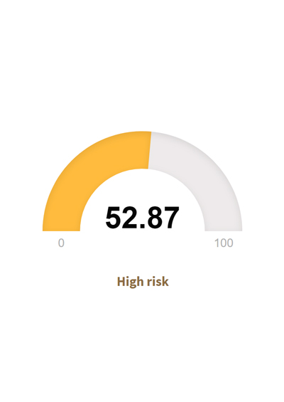 Risk Rating Tool